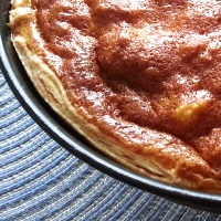 Quick and Easy Flaky Pie Crust I