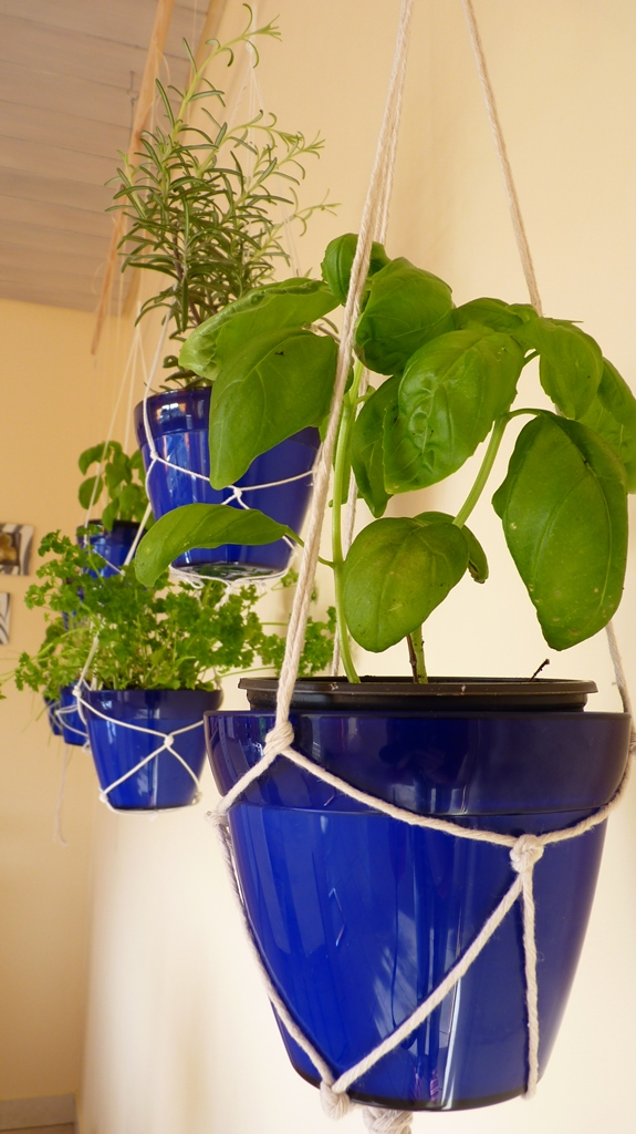 How To Make Your Own Indoor Hanging Herb Garden