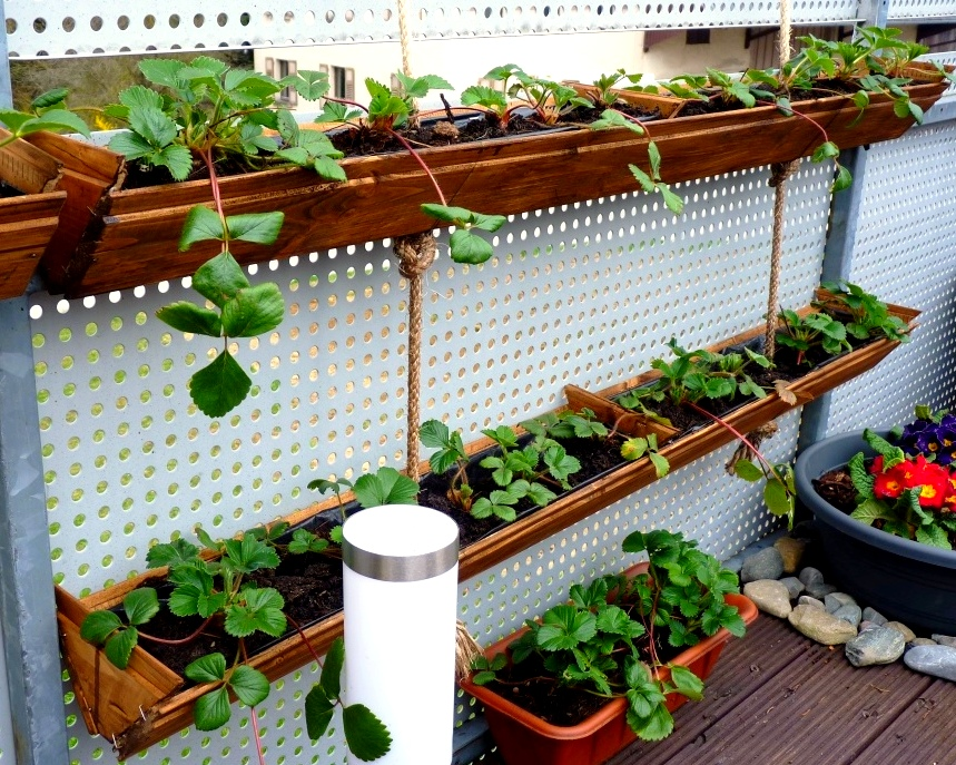 Container gardening diy strawberry planter easy and for Rain gutter planter box
