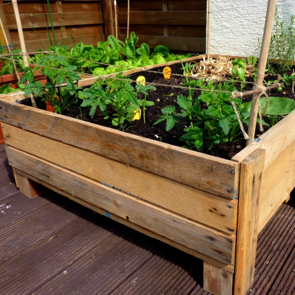 Container gardening diy planter box from pallets foxy for Pallet veggie garden