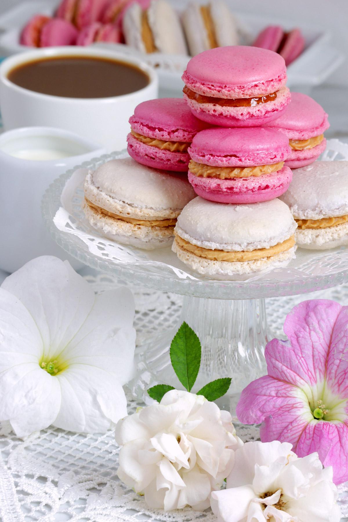 french macarons (1)