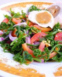 Fern_salad