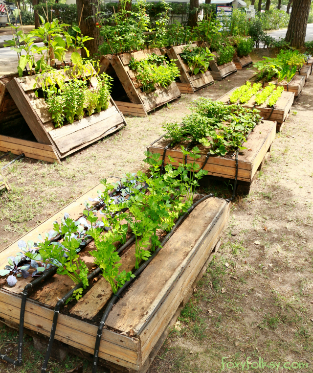 Create Your Own Raised Bed