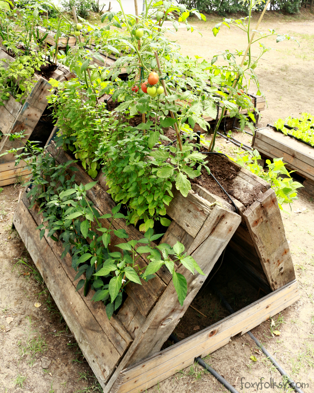 Delicieux Pallet Gardening