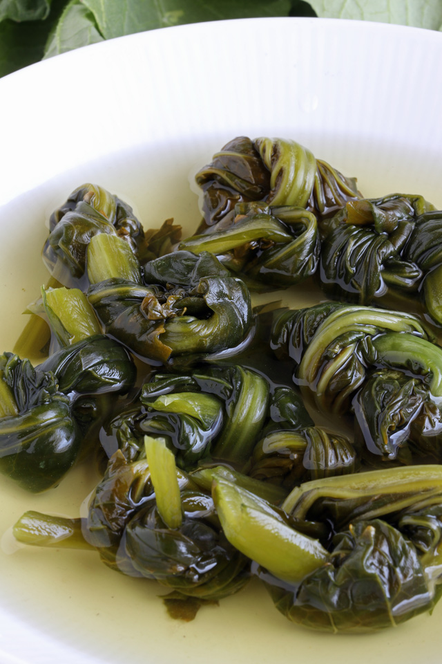 Learn how to make pickled mustard greens! | www.foxyfolksy.com