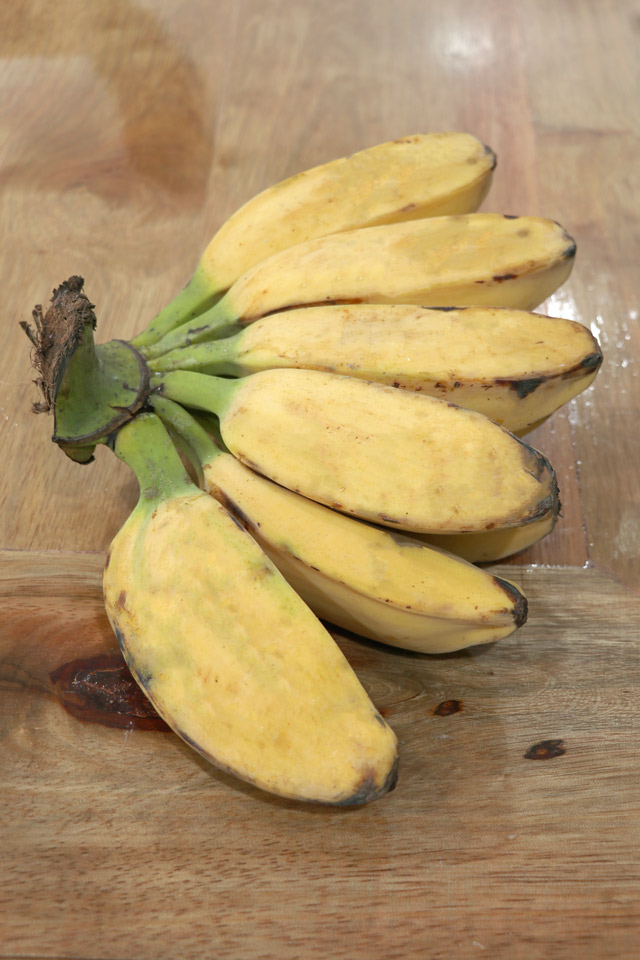 Plantain Banana or Saba for making Turon