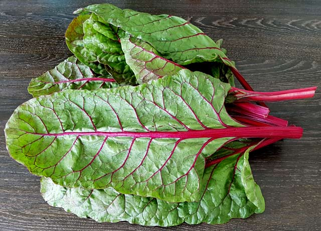 Freshly harvested Red Swiss Chard