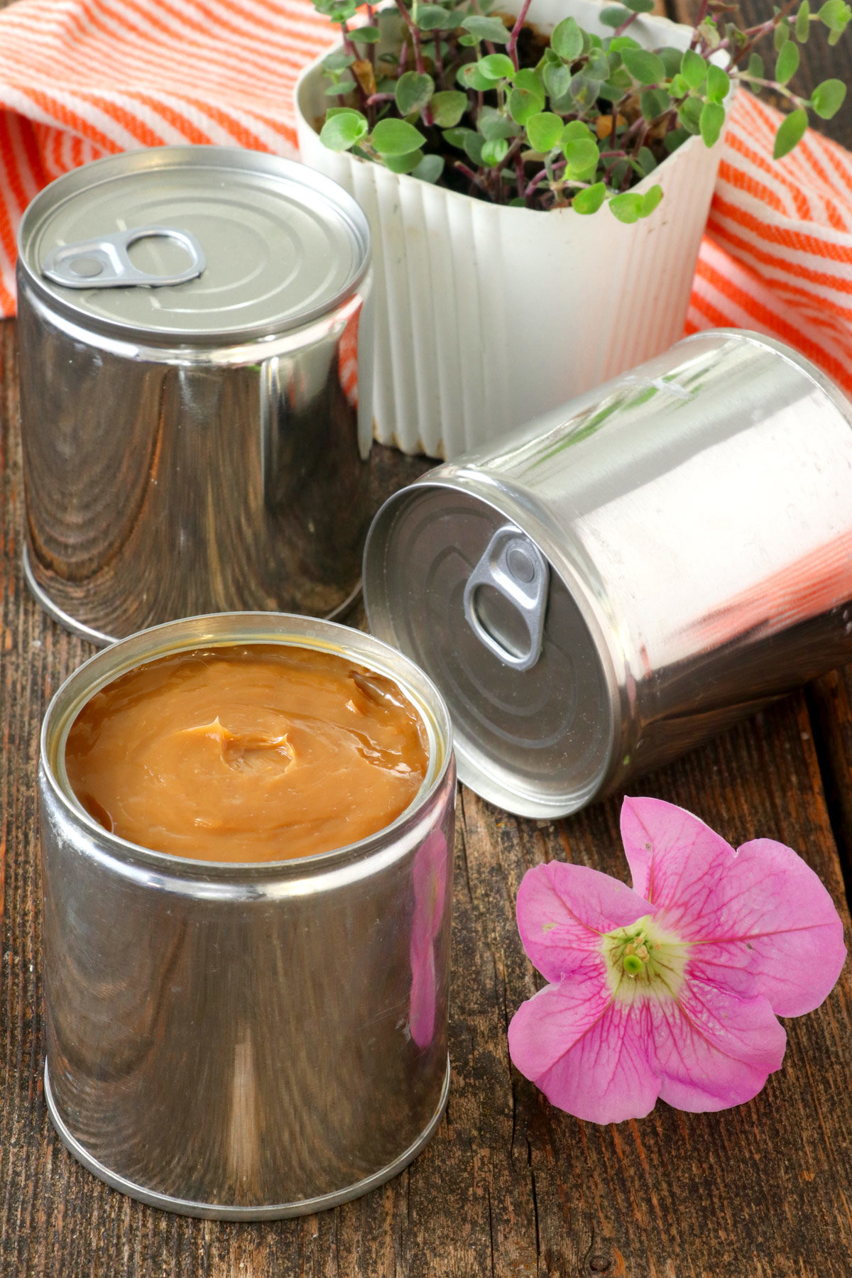 dulce de leche from canned condensed milk