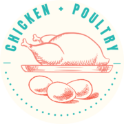 Chicken + Poultry Recipes
